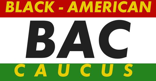 Black American Caucus Banner