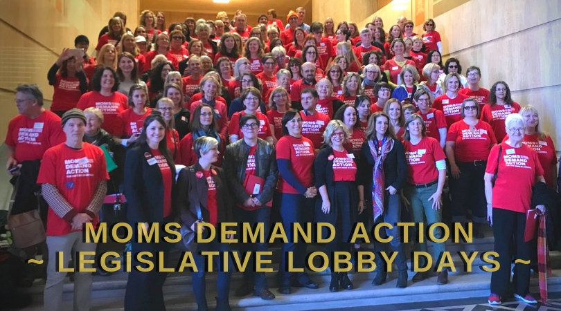 Legislative Lobby Days: Strength in Numbers