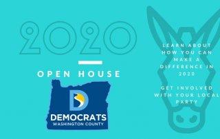 county democrats logo and donkey head illustration