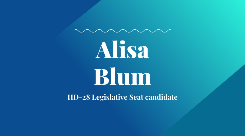 Alisa Blum – Long-time Community Advocate Seeks HD-28 Legislative Seat