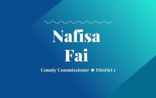 2020 primary candidate nafisa fai with washco dems logo blue and teal background