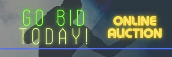 silhouette of boxer in a misty background with neon text go bid today! online auction