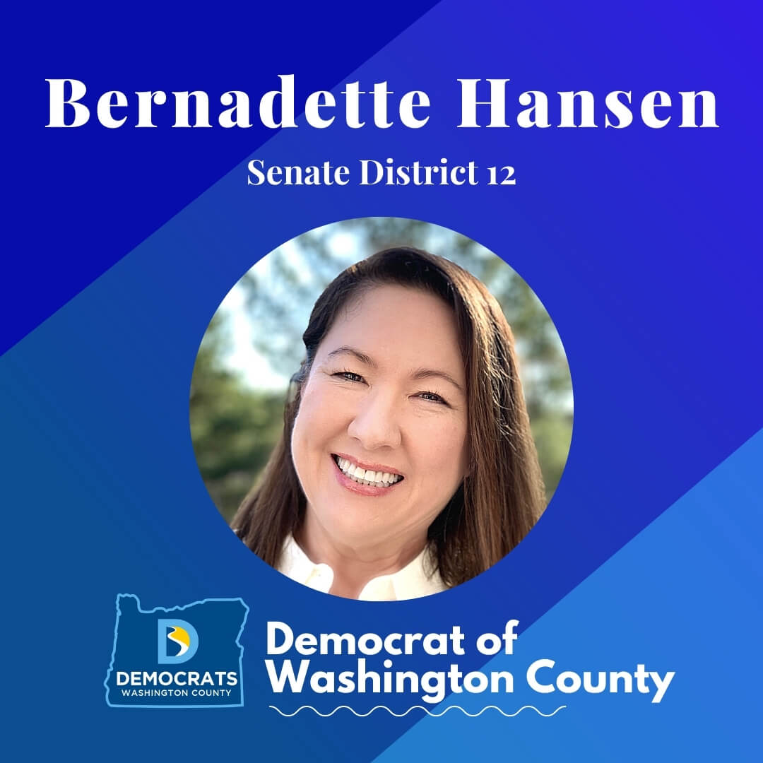 bernadette hansen 2020 candidate headshot photo with washco dems logo blue background