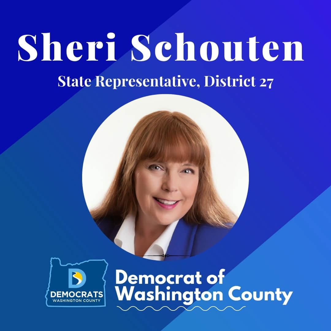 sheri schouten 2020 candidate headshot photo with washco dems logo blue background