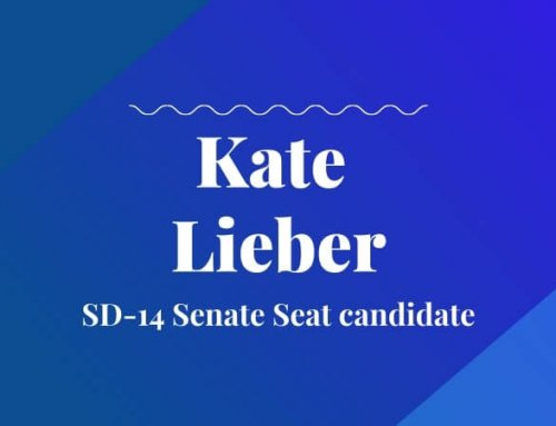 Kate Lieber, Oregon State Senate (District 14) – Candidate Interview