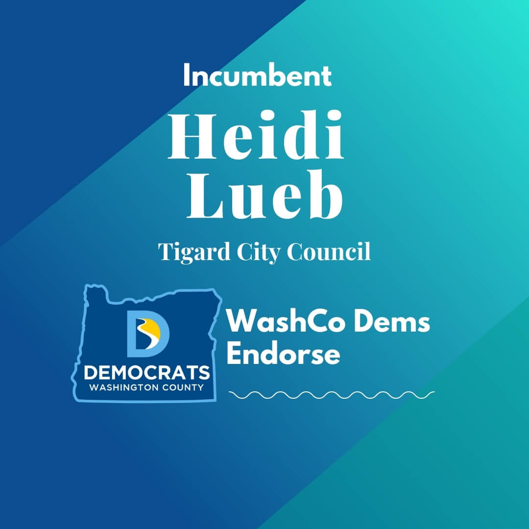 2020 primary candidate heidi lueb with washco dems logo blue and teal background