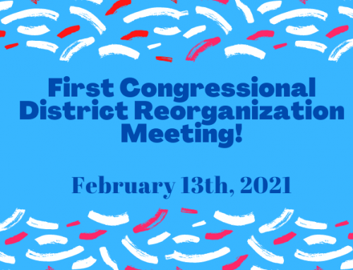 [ONLINE] First Congressional District Reorganization Meeting–on Zoom